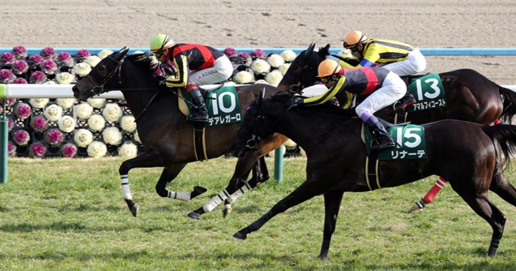京都牝馬ステークス2020予想