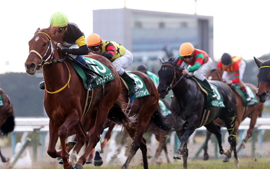 京都牝馬ステークス2020