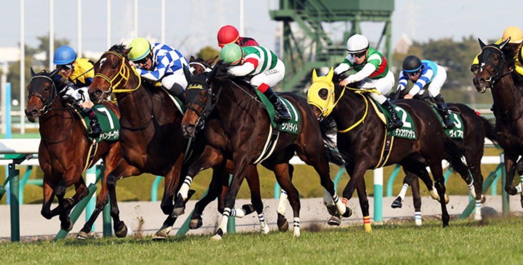 【大阪スポーツ杯2020予想】今週の競馬|3連単6点勝負