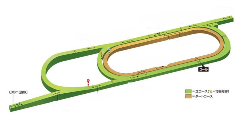 新潟競馬場芝1000m直線